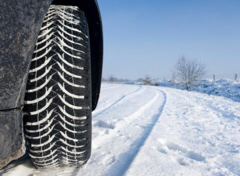 Best Mud & Snow Tires